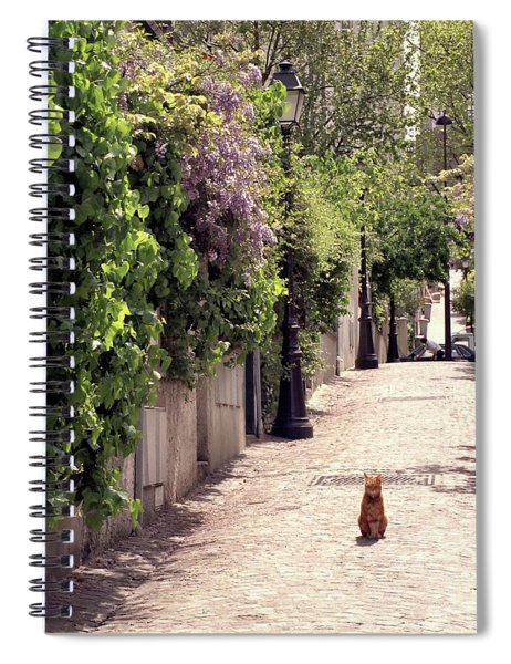 Cat On Cobblestone Spiral Notebook