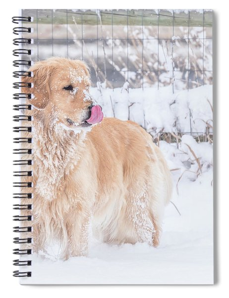 Catching Snowflakes Spiral Notebook