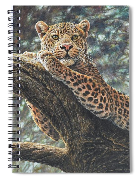 Spiral Notebook featuring the painting Catching The Sun by Alan M Hunt