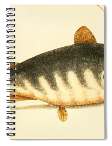 Catfish Spiral Notebook