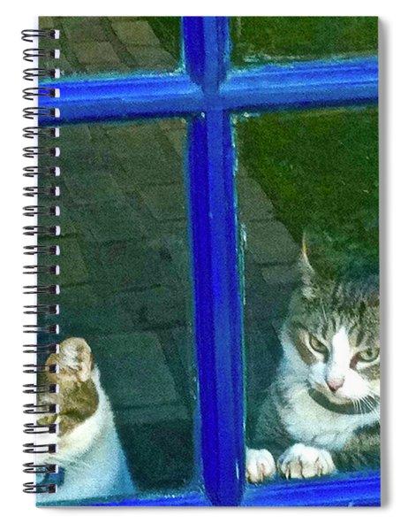Cats On Baylor Street Spiral Notebook