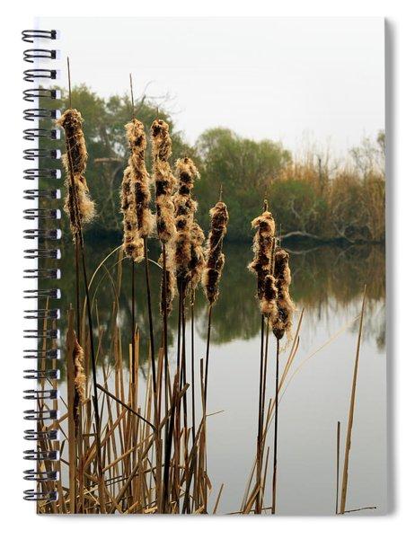 Cattails Spiral Notebook