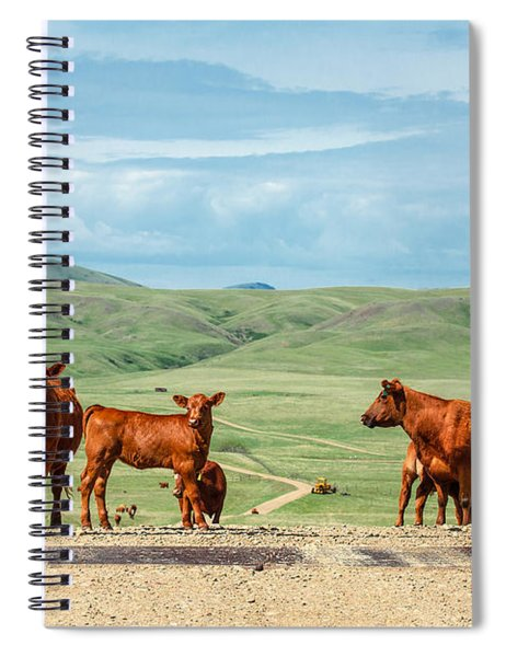 Cattle Guards Spiral Notebook