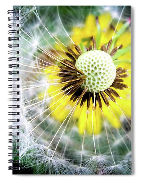 Celebration Of Nature Spiral Notebook