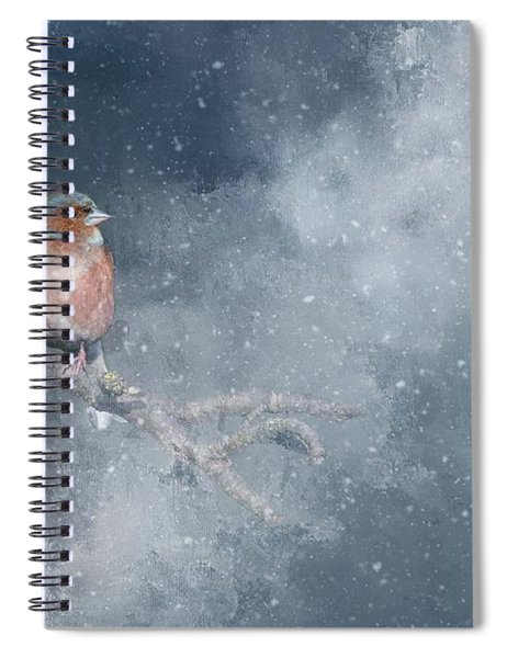 Chaffinch On A Cold Winter Day Spiral Notebook