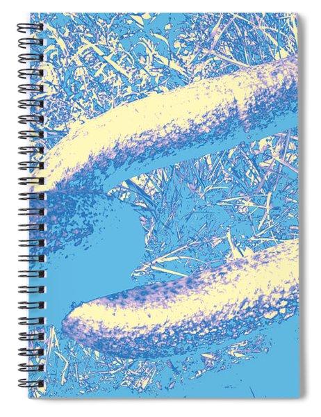 Chain #5 Spiral Notebook