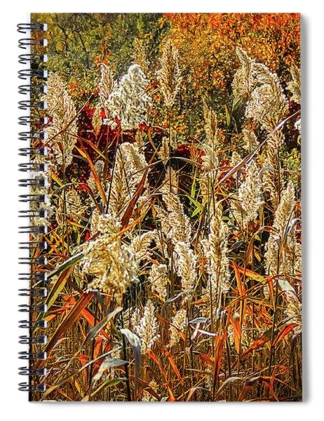Changing Season Spiral Notebook