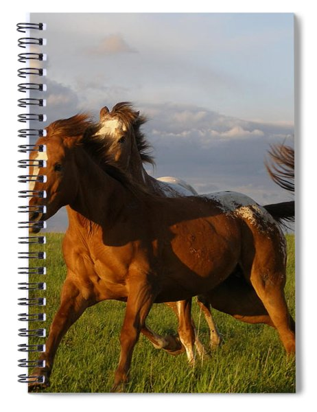 Chargers Spiral Notebook