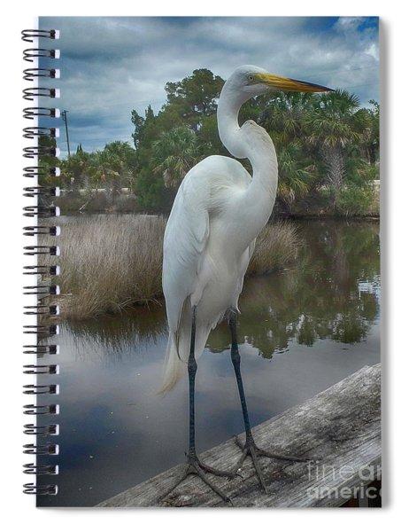 Charlie The Great Egret Spiral Notebook