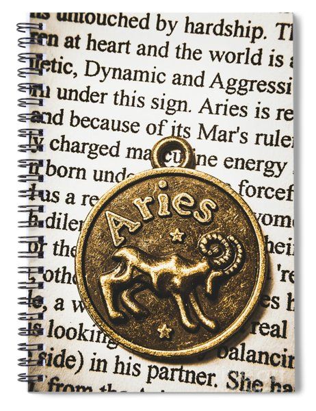 Charm Of Aries Spiral Notebook