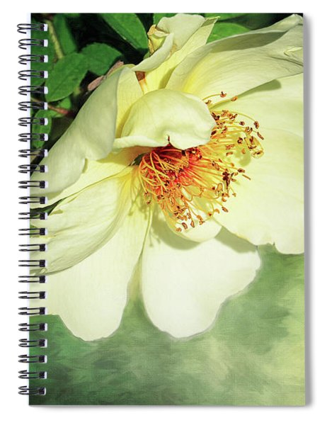 Charming Spiral Notebook