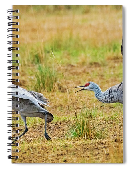 Chase Spiral Notebook