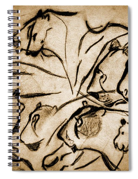 Chauvet Cave Lions Burned Leather Spiral Notebook