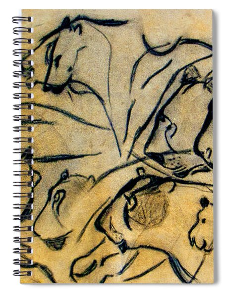 chauvet cave lions Clear Spiral Notebook