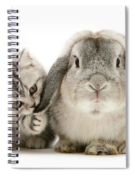 Checking For Grey Hares Spiral Notebook