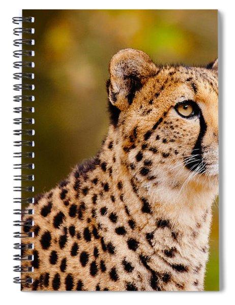 Cheetah In A Forest Spiral Notebook