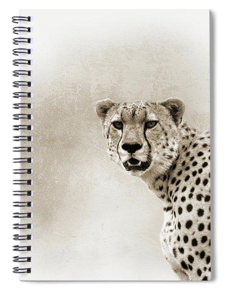 Cheetah Sepia Closeup Square Spiral Notebook
