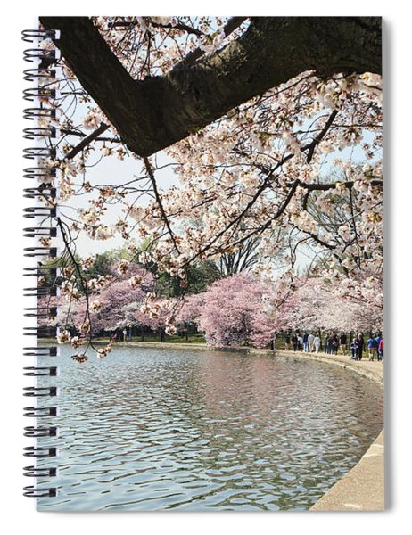 Cherry Blossom Stroll Around The Tidal Basin Spiral Notebook