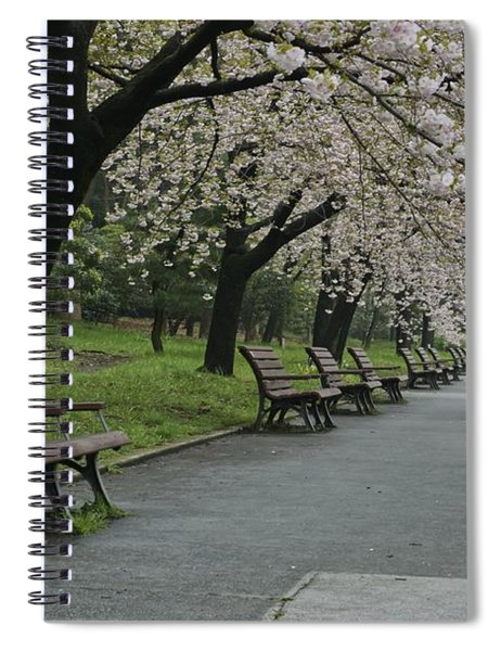 Cherry Blossoms And Benches Spiral Notebook