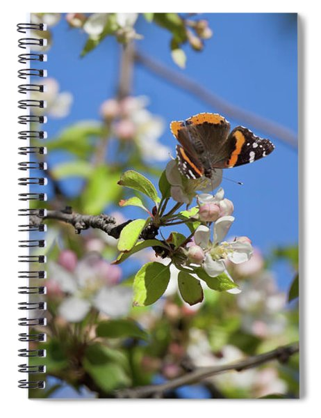 Monarch Butterfly On Cherry Tree Spiral Notebook