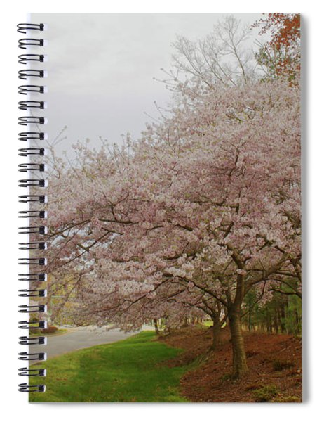 Cherry Trees On Canon Blvd Spiral Notebook