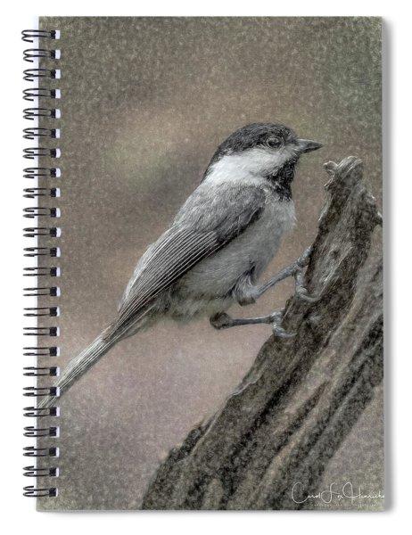 Chickadee Spiral Notebook