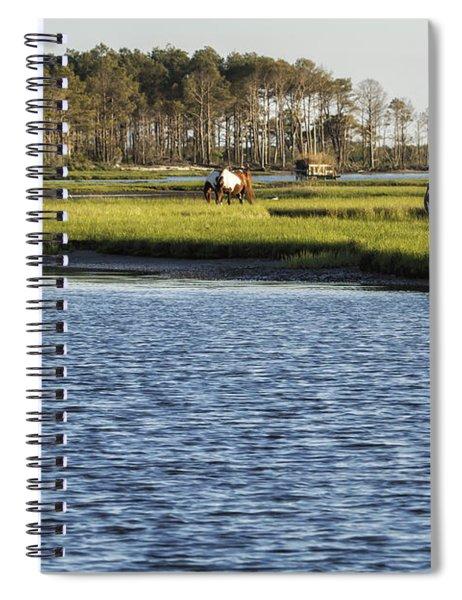 Chincoteague Ponies On Assateague Island Spiral Notebook