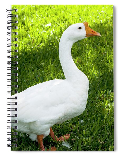 Chinese Goose Spiral Notebook