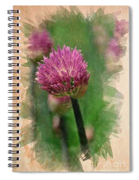 Chive Blossoms In June Spiral Notebook