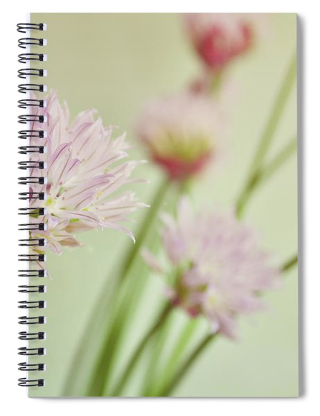Chives In Flower Spiral Notebook
