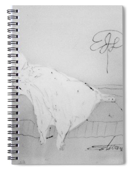 Chopin's Woman Spiral Notebook