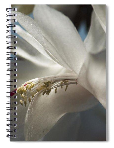 Christmas Cactus Blossom Spiral Notebook