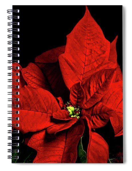 Christmas Fire Spiral Notebook