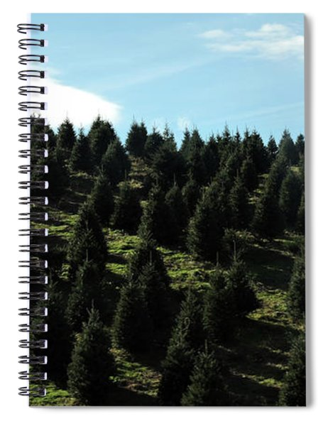Christmas Tree Farm Spiral Notebook