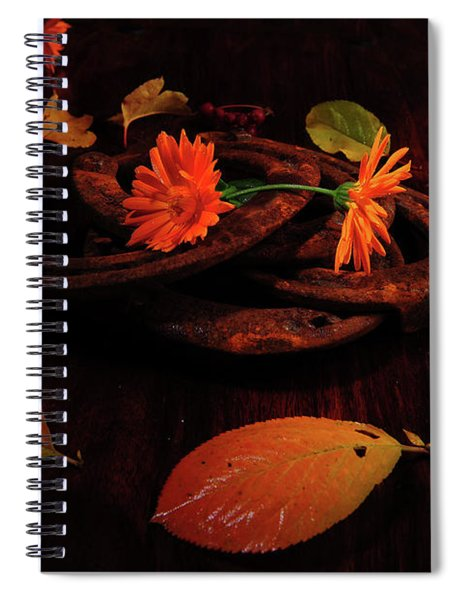 Circled Luck Spiral Notebook