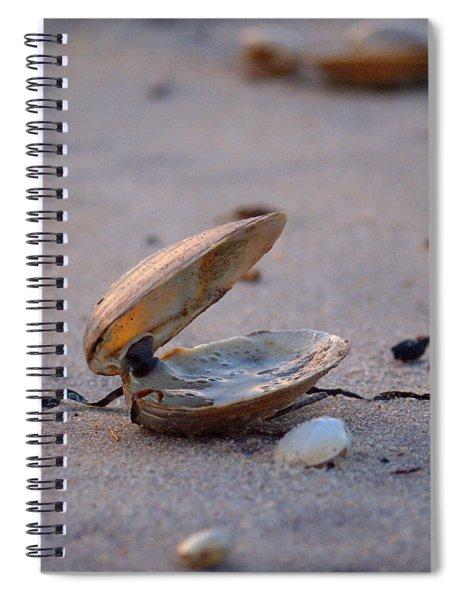 Clam I Spiral Notebook