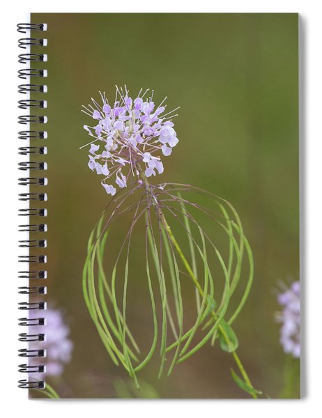 Clasping Warea Spiral Notebook