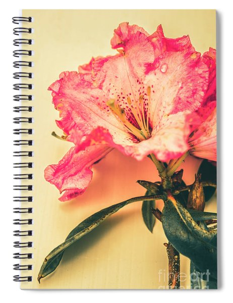 Classical Pastel Flower Clipping Spiral Notebook