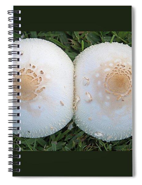 Cleavage Spiral Notebook