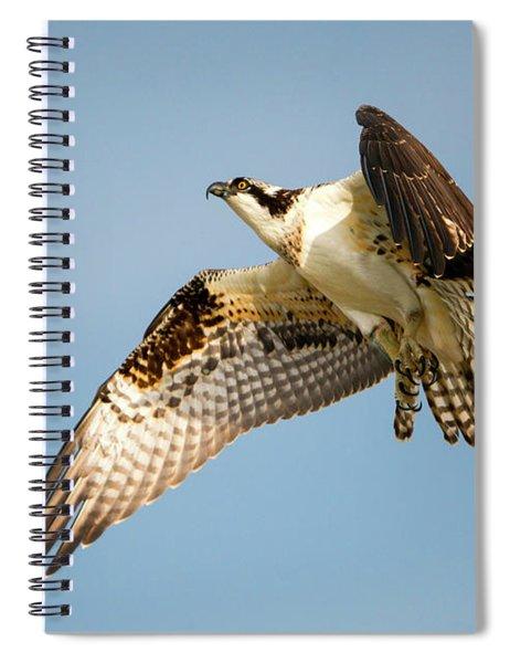 Climb Spiral Notebook