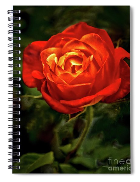 Climbing Rose Spiral Notebook