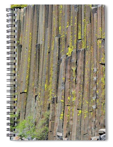 Close-up Devils Postpile Spiral Notebook