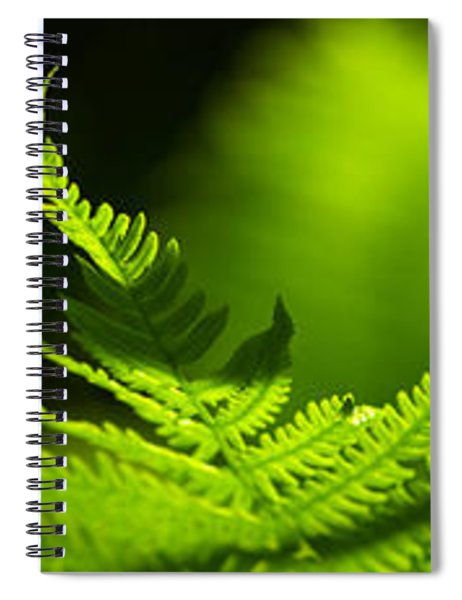 Close-up Of Ferns Leaves Spiral Notebook
