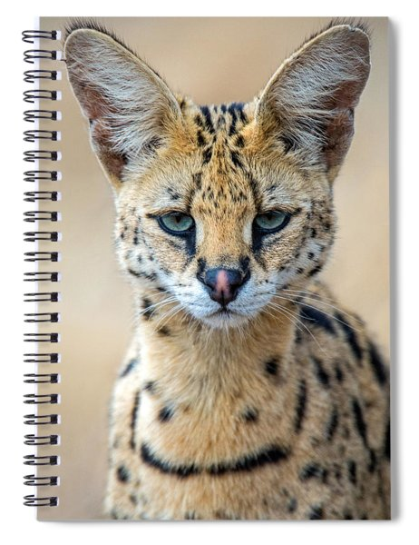 Close-up Of Serval Leptailurus Serval Spiral Notebook