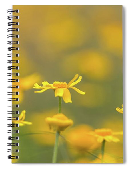 Close Up Of Yellow Flower With Blur Background Spiral Notebook