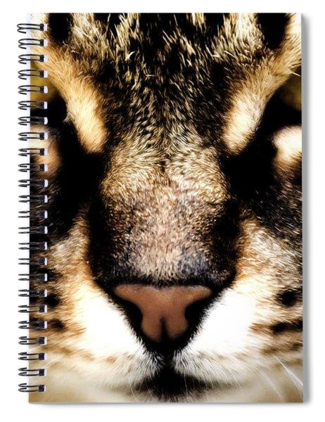 Close Up Shot Of A Cat Spiral Notebook
