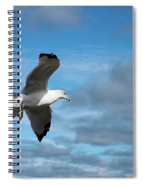 Closeup Of Seagull In Flight Against Stormy Cloudy Sky Spiral Notebook