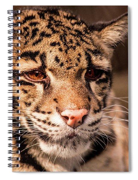 Clouded Leopard II Spiral Notebook