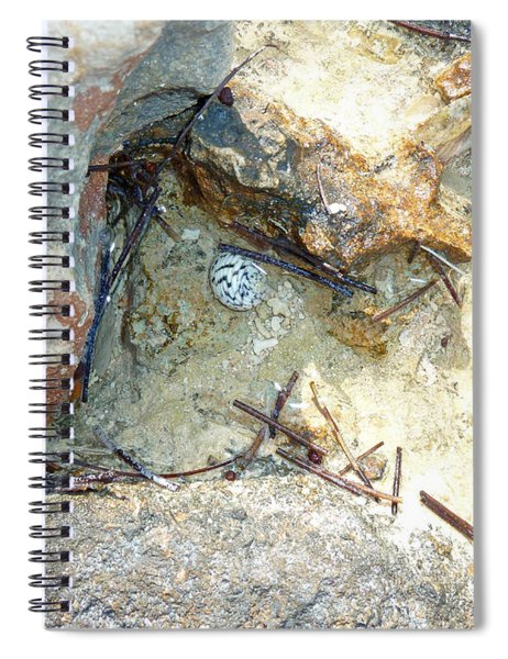Coastal Shell Spiral Notebook