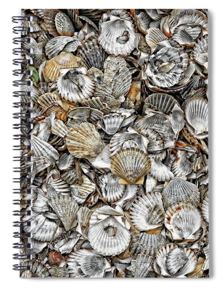Cockleshells 1 Spiral Notebook